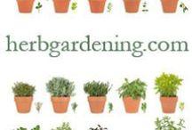 HerbGardening
