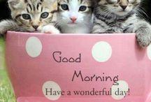 Good Morning...enjoy your day!!