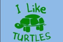 Turtles ~ I LOVE Turtles!!