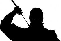 All about Ninja