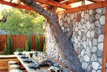 Projects: Tree House / by Carolyn Edsell-Vetter