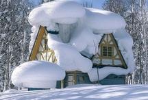 inverno con la neve  / by Roberto Cavaterra
