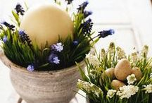 Easter & Spring / by Kimberly Wyatt