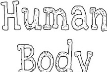 Human Body Unit / by Summer