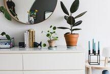 apartment living / by Madison | Rad Maker