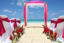 Hawaii Wedding / by Michelle McMillen