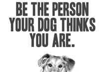 Pet Quotes ♥ / Best pet quotes from Pinterest and beyond! Pets are the wisest among us.