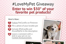 Giveaways & Promotions!  / Our Favorite pet-inspired contest/giveaways! Fun for pets and pet parents!  / by PetCareRx