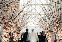 Weddings ~ Parties ~ Special Events  / Beautiful photos of wedding receptions, parties, brides, flower girls