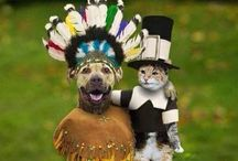 Doggie Costume Party / Doggie Costumes / by Diana deming From Virginia