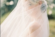 Wedding Photos - Veil