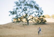 Photos - engagement sessions