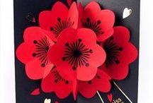 Flower Cards / by Lisa Berg