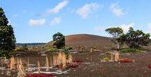 Hawaii - USA Travel Highlights - Backpacking / Auf Hawaii findet man traumhafte Sandstrände, azurblaues Wasser, Korallenriffe mit bunten Fischen, smaragdgrüne Wälder, aktive Vulkane und ganzjährlich sommerliche Temperaturen. Egal ob surfen, wandern, tauchen oder klettern – auf Hawaii ist für jeden was dabei...