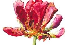 SS14 TREND: Botanical