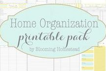 Freebies & Printables / by Brittany Rice Photography