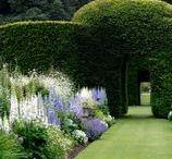 Garden ideas /  Relaxing, contemplative