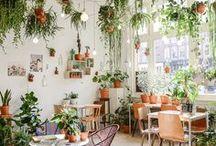 Deco végétal / Vegetal Interior / Découvrez ma sélection d'ambiances d'intérieur pour une décoration qui vous ressemble ! Des bonnes idées où la nature reprend sa place pour votre #homesweethome A retrouver aussi sur www.lelabonet.com