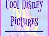 Cool Disney Photos / Pictures taken at the Disney Parks