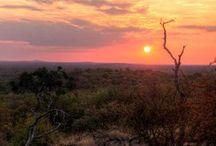 Riebelton Safaris