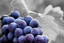 NHM - Fruit