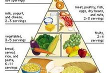NHM - The Food Guide Pyramid