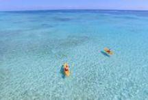 Dreaming of the Caribbean... / by Las Terrazas Resort