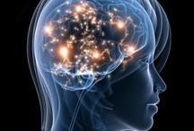 Psychology ~ The Human Mind