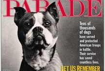 War Dogs / The K-9  Troops and Veterans / by Peer Into The Past: History
