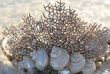 Seashells ~ Seaglass ~ Sea Jewels / See a seashell ~ seaglass ~ sea jewels and other treasures ~ Put a Pin on it.  Enjoy ~ share the invite or email me at fannyc107@gmail.com to join.