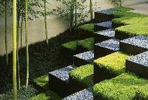 Garden / Arredamento esterni e Giardinaggio