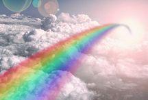 Rainbow's / Rainbows