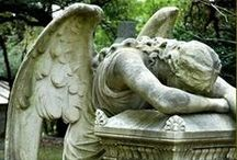 Graveyard Garden / by Angela Feltner