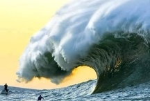 Surf Inspiration / by Courtney Fromberg