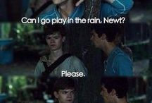 The Maze Runner☻ / About The Maze Runner and it's fandom!!
