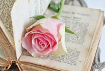 """bOoKS / """"A reader lives a thousand lives before he dies."""""""