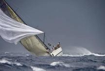 dream boats / by Luigi Consiglio