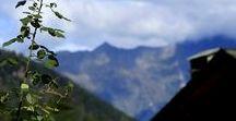 Gerola Alta: meravigliosamente montagna! / #Valgerola #Pescegallo #FUPES #details