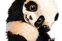 pandas <3 / um pandas