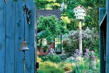 EL JARDÍ AL BALCÓ, the green garden