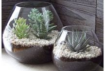 DIY Projects and Crafts / by Angela Burr