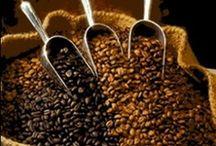Coffee Lovers / by Amy Weldon