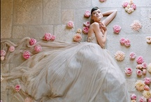 me encanta / by Fernanda Siqueira Schroeder
