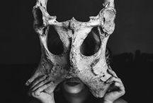 No Bones About It / by Rachael Duran