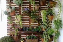 Κατακόρυφοι κήποι / Ιδέες για κρεμαστούς κήπους και διακοσμητικές γλάστρες