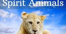 Spirit Animals / Our spirit animals are true allies, and have a great deal to teach us, about our own nature, and our innate abilities.