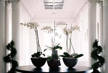 Interior :: Details