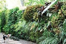 Garden :: How-tos