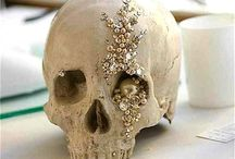 Skulls / by Sasha Rose
