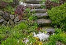 Garden walls, paths and fences / by Constanze List